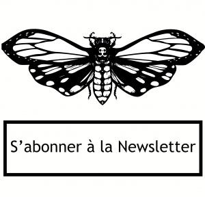 newsletter cabaret aléatoire